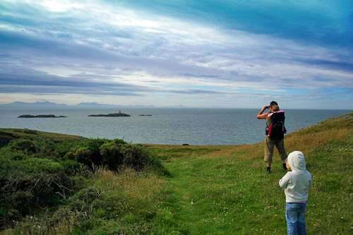 Rhoscolyn coastal walk01